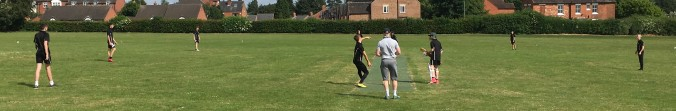 House Cricket 2018